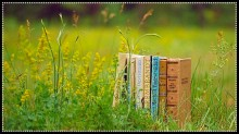 book-reads
