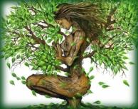 tree-woman3
