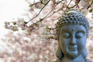 392_Buddha_tree