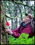 lindahunter-treehug