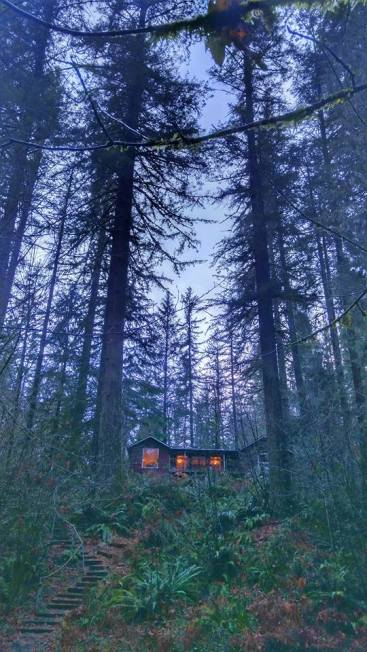 Cabin from below - Brad