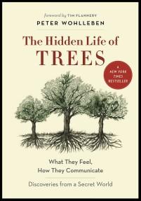 hidden-life-of-trees2