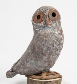 anna-owl