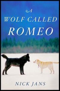 Wolf Called Romeo2