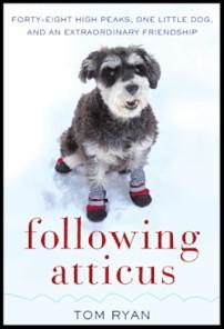 Book Following Atticus