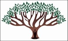 treeyogaborder